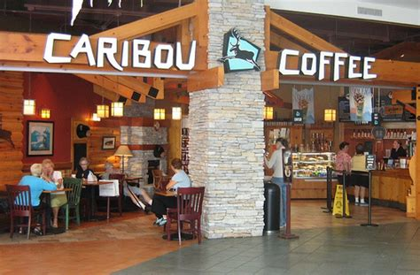 Caribou Coffee Mba Internship by Caribou Coffee Manager And Supervisor Bemidji