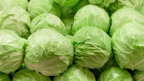 new year eats cabbage reasons to make cabbage your new go to food