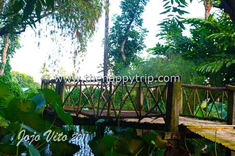 buro buro resort alangilan the refreshing buro buro herb farm