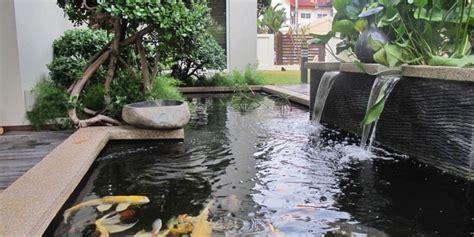 Alat Ukur Ph Kolam Ikan begini cara menetralkan ph air pada kolam ikan hias cv