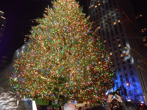 tree lighting rockefeller center rockefeller tree lighting ties to berkeley heights
