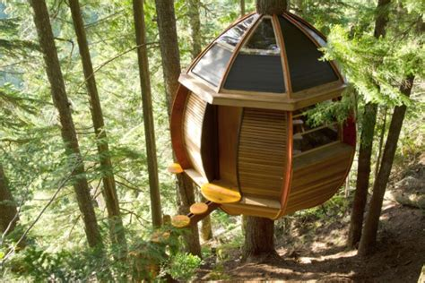 house design for adults treehouses for and adults hgtv