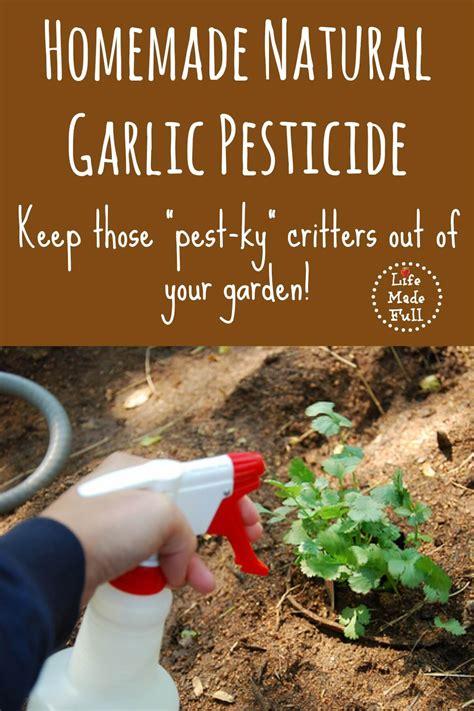 homemade natural pesticide life  full