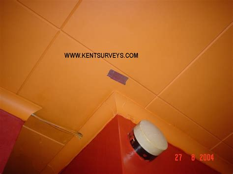 What Does Asbestos Ceiling Tile Look Like by Asbestos Ceiling Get Domain Pictures Getdomainvids