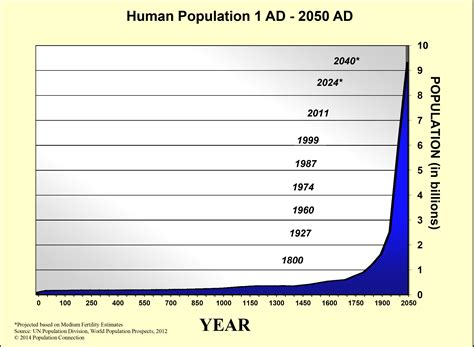 section 5 3 human population growth image gallery human exponential growth