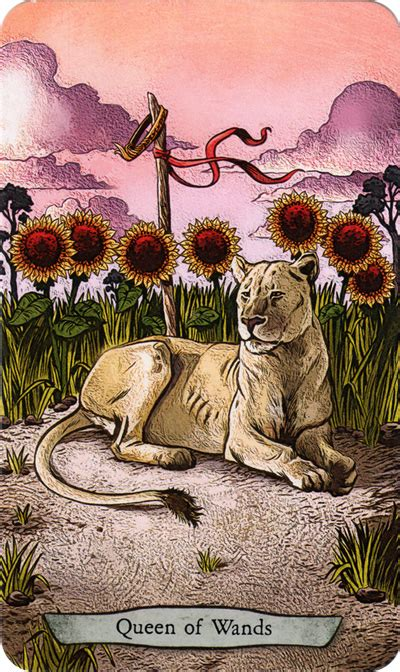 animal totem tarot animal totem tarot