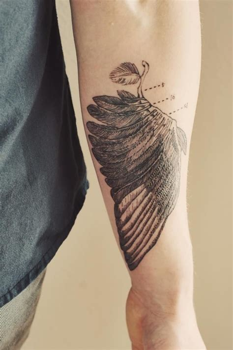 anatomically correct wing tattoo brucius tattooist wing anatomical