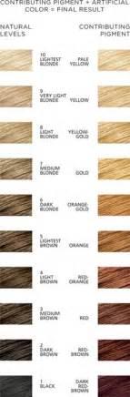 redken toner color chart hair dye color chart redken loreal brown hairs