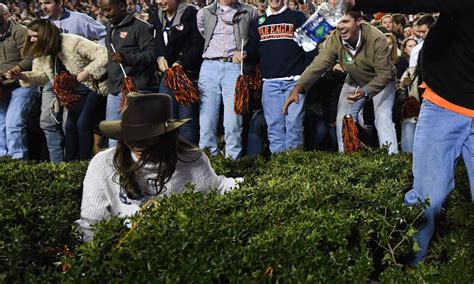 auburn fans in bushes auburn fans hilariously get stuck in bushes while trying