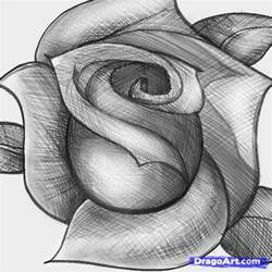 how to sketch a rose step by step sketch drawing