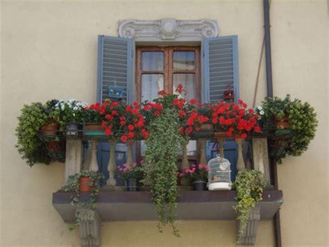 piante da davanzale idee per un davanzale fiorito pollicegreen