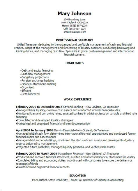 1 treasurer resume templates try them now myperfectresume