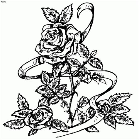 free coloring pages for adults roses get this printable roses coloring pages for adults 41558