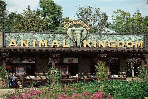 themes kingdom sign up for a chance to tour backstage at disney s animal
