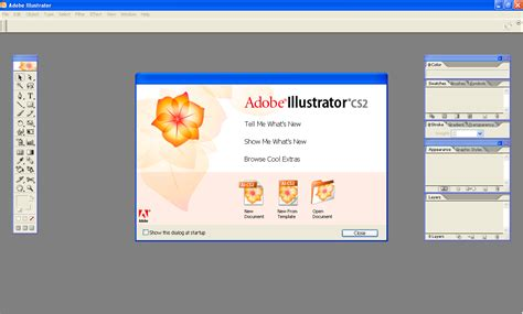 adobe illustrator free download full version cs2 quadaktiv blog