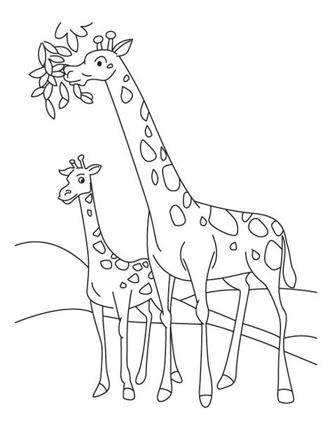Giraffe Coloring Pages For Kids Coloring Home Giraffe Coloring Pages Printable