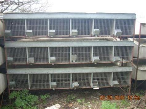 jaulas conejeras industriales desinfectante pulverizable para jaulas de conejos