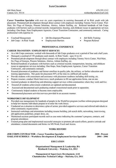 functional career change resume sles best 25 functional resume template ideas on curriculum design creative cv design