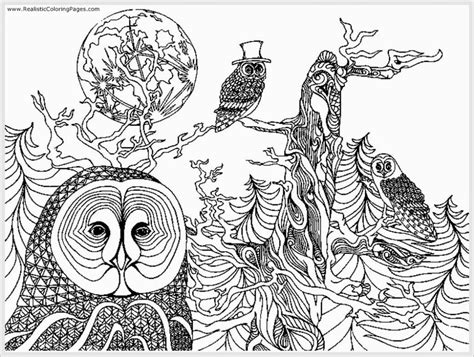 for adults coloring pages owl free printable coloring pages