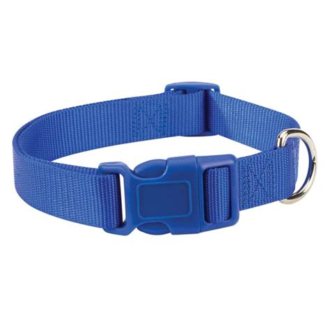 nautical collars zack and zoey puppy collar nautical blue