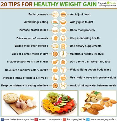 Nutrition Diet Chart To Gain Weight Healthily