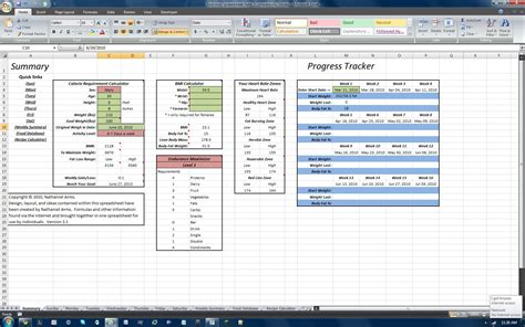 P90x Spreadsheet by P90x Tracking Sheets Buff