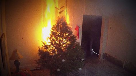 christmas tree fires simple tips to avoid potentially