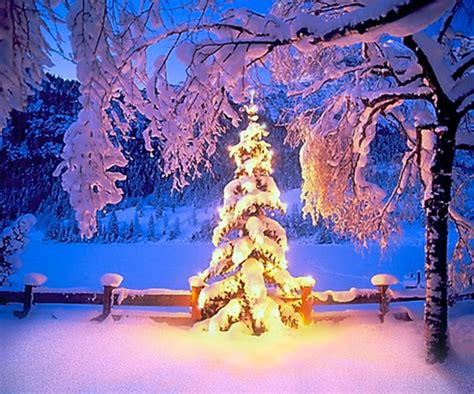 google images christmas scenes 30 wonderful winter wonderland scenes captured in design