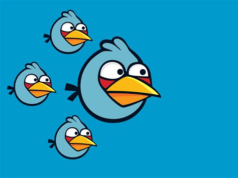 Angry Bird angry birds angry birds wallpaper 34488164 fanpop