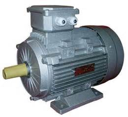 induction electric motor impact induction motor