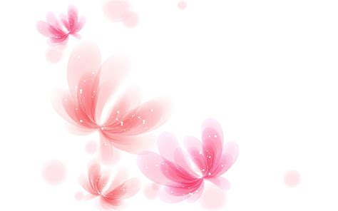 wallpaper pink design white background wallpaper images hd wallpapers