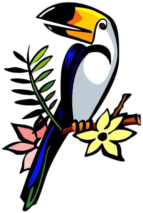 Home Design Inspiration toucan clipart clipartion com
