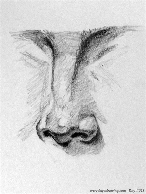 Sketches Nose by Every Day A Drawing Or The Documented Evidence Of