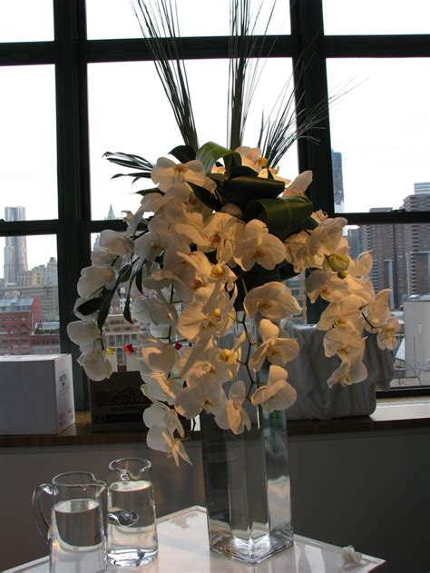 Phalaenopsis Orchid Centerpiece Planning Our 7 Best Phalaenopsis Orchids Arrangements Images On