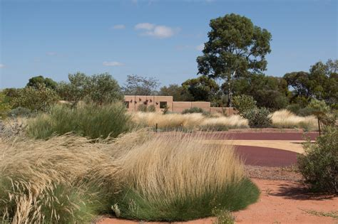 Arid Lands Botanic Gardens Day 36 Australian Arid Lands Botanic Garden Port