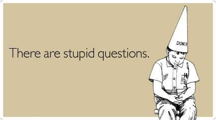 Why Prefer Stupid by Top 10 Stupid Questions 1 5 Ask The