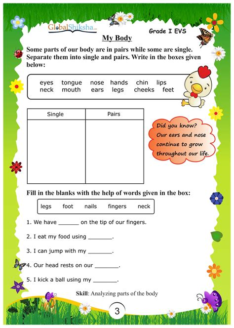 free printable evs worksheets for class 1 grade 2 evs worksheets free the best and most