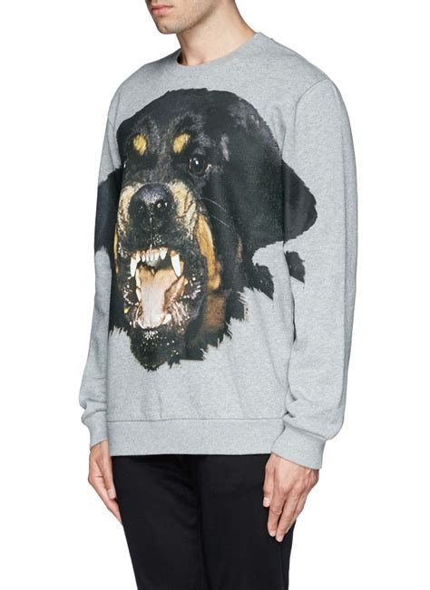 givenchy rottweiler sweatshirt givenchy rottweiler print sweatshirt in gray for lyst