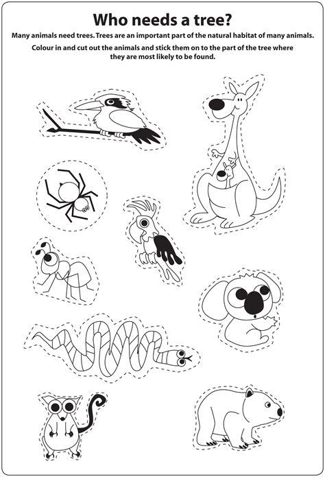 australia worksheet resultinfos what animals need to survive worksheet resultinfos