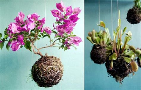 Hanging Wall Planter by 20 Ideas For Hanging Flower Pots Indoor Plants Exhibit