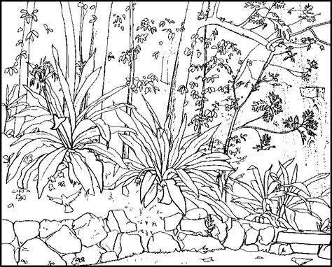 waterfall coloring pages a of a waterfall in rainforest coloring pages