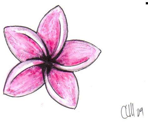 plumeria tattoo designs pink plumeria picture