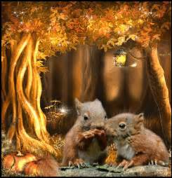 autumn squirrels pictures, photos, and images for facebook
