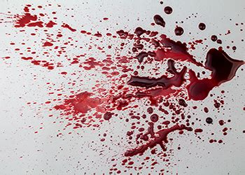 bloodstain pattern analysis experts blood pattern analysis uk forensic expertise and