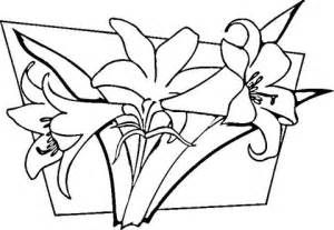 Flowers Free Sul lilies coloring page free printable coloring pages