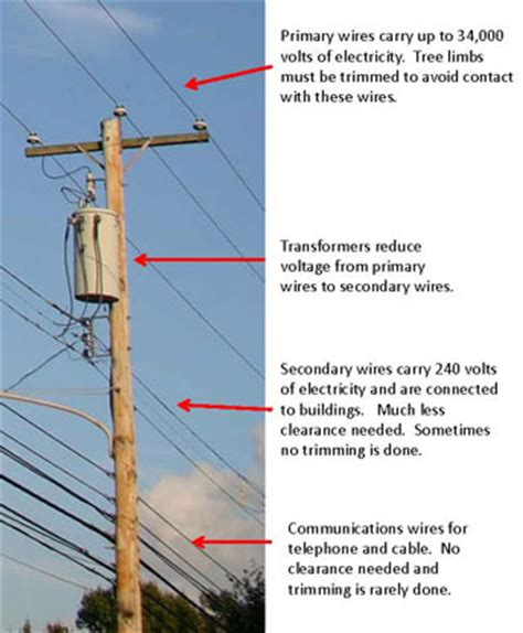 electric pole diagram greening our cities and towns