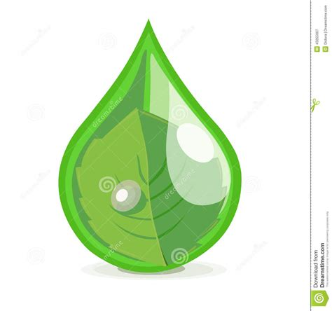 Mr Acrysion Water Based N11 Flat White Mr Hobby leaf in drop of water flat design vector stock vector