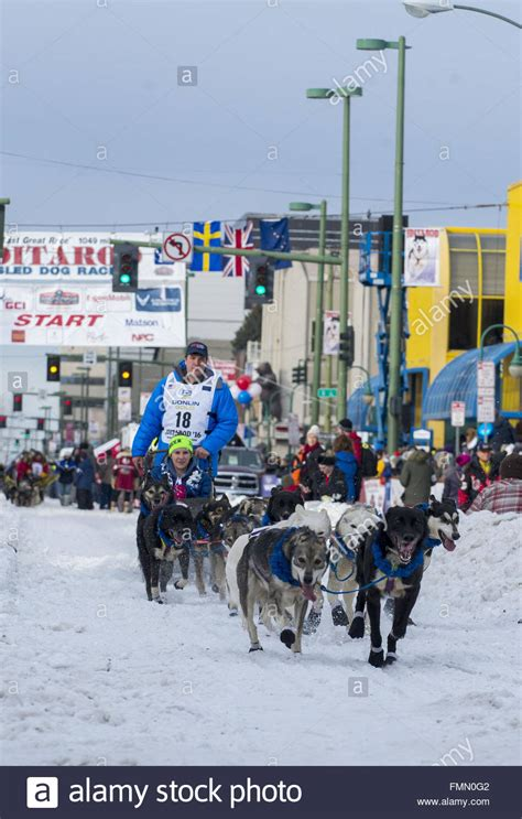 how do mushers their dogs for the iditarod related keywords suggestions for mushers of 2016