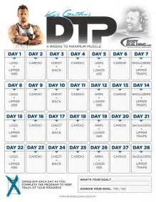 workout plans for to build at home muscle building workout routine pdf eoua blog