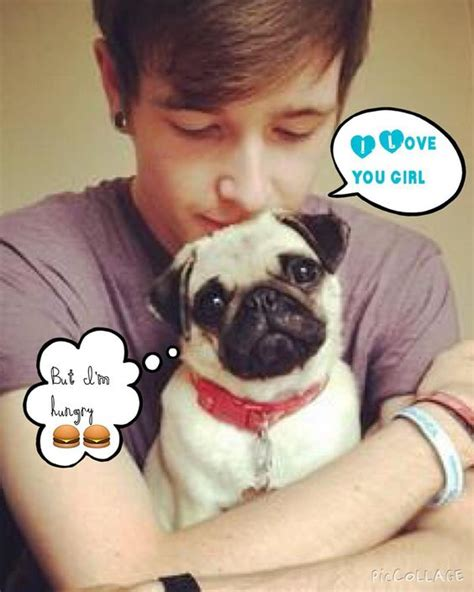 dantdm pugs dantdm pugs by miss magic5624 dantdms awsome pugs pug and